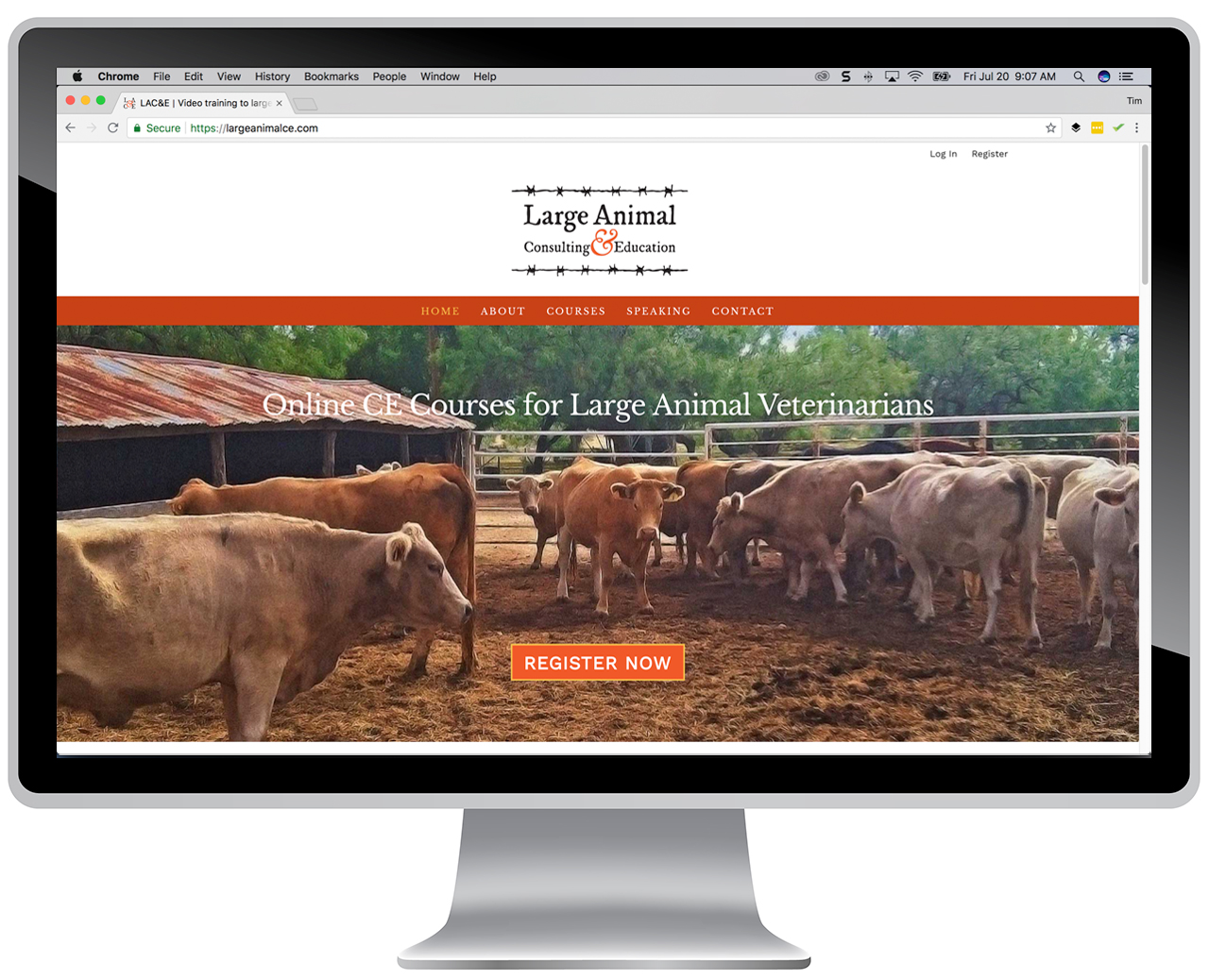 Large Animal Consulting & Education